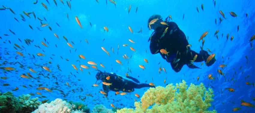 Buceo en Isla de Sal