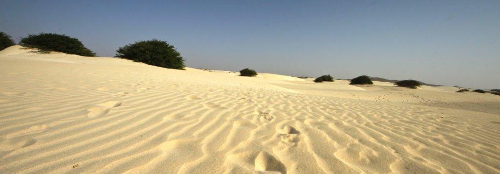 La isla de las dunas boa vista